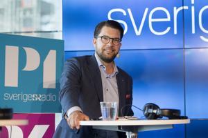 Jimmie Åkesson (SD), partiledare, har sagt att Sveriges radios P3-kanal borde läggas ned. Foto: Henrik Montgomery/TT