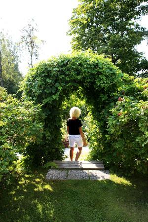 Portal av Humle – en av flera.