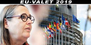 – EU är på väg i en riktning som inte vi står bakom med stängda gränser, mer av gemensamma arméer, mer militärt och mindre civila fredsinsatser, säger Bodil Valero.