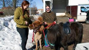 Systrarna Eiwor Eldståhl och Görel Eldståhl Willén brukar hålla i ponnyridningen på marknader i Norberg. Här är de med Lova och Yatzy.
