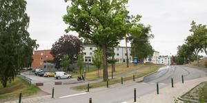I hörnet Gammeltorpsvägen–Lundavägen vill fastighetsägarna bygga ett vinklat sex våningar högt hus. Eken i hörnet ska bli kvar.