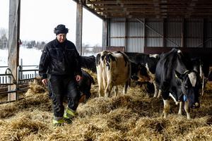 En dålig sommar är anledningen till den rådande foderbristen i länet menar mjölkbonden Markus Karlsson från Bjällsta Gård.