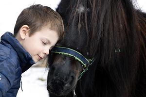 Alexander Nilsson med sin shetlandsponny Blixten. Tillsammans med hästen blir Alexander mer öppen och han klarar av situationer som annars kan vara jobbiga.