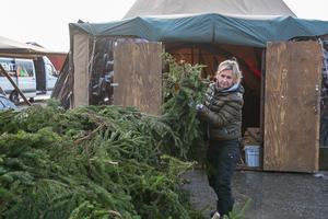 Anna-Lena och övriga ungefär 110 anställda på Jamtli rycker in och gör ibland saker utanför de ordinarie arbetsuppgifterna, som att lägga ut granris i julmarknadens stora mattält och utanför de gamla husen på området.