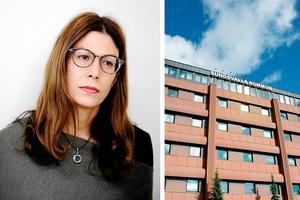 Bodil Hansson (S) vill sudda ut klasskillnader i Sundsvall. Bilden är ett montage. Foto: ST arkiv.
