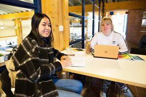 Se Meh och Mimmi Sjölander använder facebook mest i studie- och informationssammanhang.  De satsar på ett yrkesliv inom förskolan.