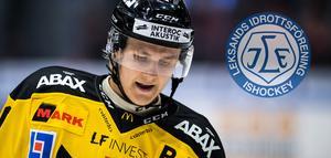 Foto: Magnus Lejhall / BILDBYRÅN