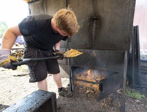 Nils Ehnberg fyller på med alspån på elden.