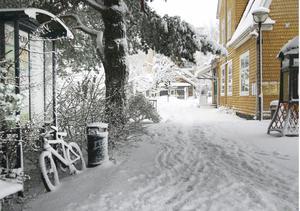 14 november 2007. Ibland kan vintern komma överraskande snabbt. Bilden är tagen dagen efter att