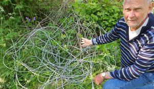 Peter Gerdman på Norröra är oroad över alla kabelhärvor som ligger ute i naturen på ön. Foto: Ove Gerdin