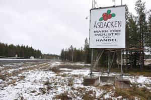Krokoms kommun tar omtag med planerna på en handelsplats vid Åsbacken – och välkomnar Biltema dit. Linus Kimselius (M), ordförande i samhällsbyggnadsnämnden tror att företaget kan locka fler att etablera sig där.