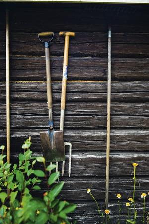 Läs på om hur gamla hus reagerar på nya typer av målarfärg innan du skrider till verket och gör något som kanske skadar.