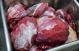 Jonas Paulsson, Djurens parti reagerar mot miljöpartisten Gustav Fridolins åsikter om en skatt på kött