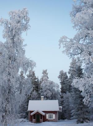 I ett hus vid skogens slut.... Foto: Anette Mårtensson