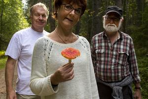 Sven-Åke Johnson, Ann-Christin och Anders Hirell har skogen som undervisningslokal.