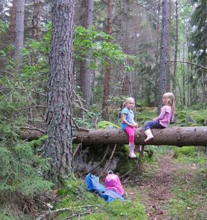 Fredrika och Elin tar en rast när de är i skogen och letar efter svamp.