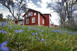 Skolan, som uppfördes i 1847, byggdes till en början av Singöborna själva och skänktes sedan till kommunen. Foto: Anders Sjöberg