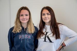 Alina Butiokova och Alexandra Berggren går andra året på Brinellskolan. De hade gärna studerat teckenspråk om möjligheten funnits.