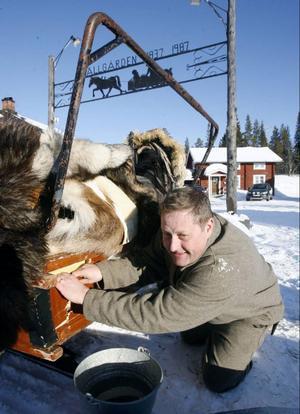 Thomas Rihpa fick problem med släden sedan en av hästarna skenat in i ekipaget.