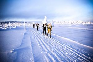 Strax över 100 deltagare genomförde premiären av Jemtland Ski Tour i Tåsjö. Här ser vi en del av deltagarna uppe på Tåsjöberget.
