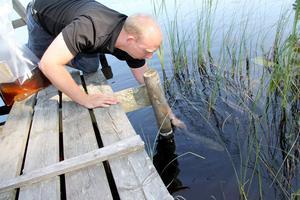 Jonas Jonsson kom hela vägen från Småland för att lämna över fiskarna i Norrflugans sportfiskeklubb.