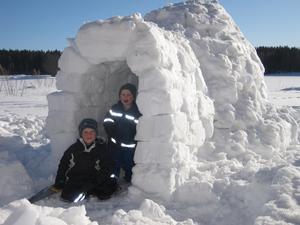 Pontus och Viktor har byggt en riktig snöigloo med sin pappa.