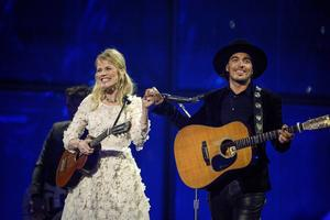 The Common Linnets.   Foto: Janerik Henriksson/TT
