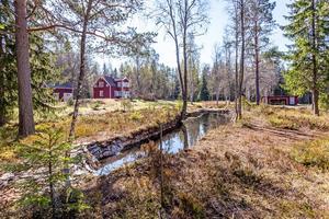 Foto: Malin af Kleen. I en glänta i skogen med adressen Hyttnäs 106 ligger det här huset som lockar många som är på jakt efter en sommarstuga.