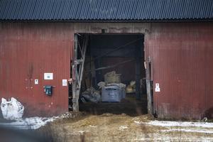 Den kritiserade mjölkgården är i dåligt skick och i stort behov av modernisering, enligt rekonstruktören Håkan Jansson.