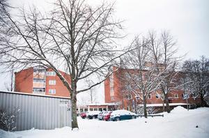 Blomstret består av 39 lägenheter på Söder i två femvåningshus från 1985 med många gemensamma lokaler. Tanken var redan från början att kollektivhuset skulle bidra till enklare vardagsliv och större gemenskap grannar emellan.