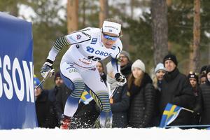 Foto: Ulf Palm/TT