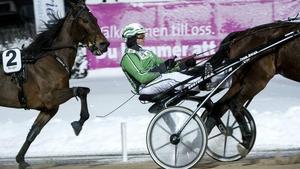 Åke Svanstedt kommer tillbaka till Bergsåkers travbana. Bild: Linus Wallin.