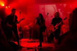 Barbro Says No består av Micke Berlin (trummor),  Robert Lindgren (bas och synth), Tomas Karlsson (gitarr), Liv Hope (sång), Victor Dahlin (keyboard och sång).