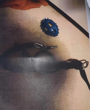 Foto: Polisen. Marley hade två tunga kättingar runt halsen som han hela tiden försökte få av sig, beskriver poliserna.