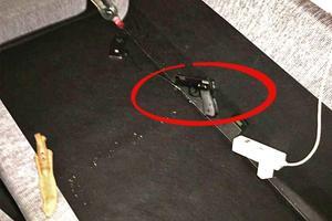 Polisen har hittat en pistol som misstänks ha använts vid kidnappningen. Pistolen är en så kallad soft air-gun. Bild: Polisens förundersökning