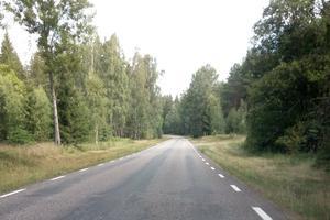 Väg 2844 från Tidaholm till Fridhem i Härja är kurvig och smal.