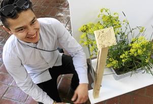 Ängar skyddas i Hemsta och Sätra. Douglas Velasquez - Äng: Ett skydd för ängsytor i stadsmiljö, ett sätt att skapa attraktiva utemiljöer och värna om den biologiska mångfalden. Äng består av ett skydd i två material som både stänger in och informerar. Douglas Velasquez har redan fått gensvar. I Hemsta och Sätra ska gräsytor omvandlas till ängar på det här sättet. Ängar gynnar insekter som pollinerar.