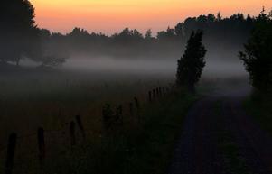 En dag på semestern, på landet utanför Tidan i Västergötland, kom ett åskregn på eftermiddagen. Senare på kvällen, efter solnedgången, kom den fuktiga dimman, eller rånnan som vi västgötar säger, rullande över ängarna.