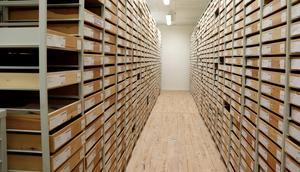 Ett av museimagasinets olika rum, där föremålen är prydligt placerade i hyllor och gångar.