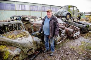 Åtta skrotbilar har Calle Lundkvist hämtat hem från skogen till en installation på museets bakgård.