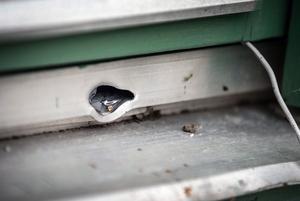 En av kulorna fastnade i karmen till köksfönstret.