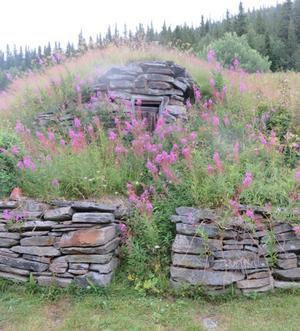 En jordkällare i Munsvattnet.  Foto: Gunnel Fredriksson