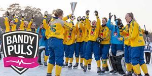 Sverige jublar efter att ha säkrat VM-guldet i Kina 2018. Bild: Gert Holmér / Svenskbandy.se