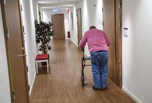 Ensamheten ökar i samhället, särskilt upplever många äldre att de är ensamma. Foto: Pontus Lundahl/TT