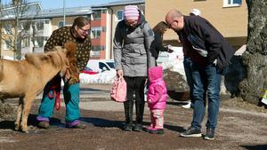 Anna, Pixie och Niclas hälsade på ponnyn Lova på påskmarknaden.