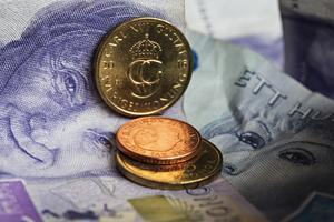 Det blir inte många kronor i pension om du inte sparar själv, upplyser Sekelage. Foto: Fotograferna Holmberg/TT