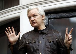 Julian Assange är föremål för undersökning i pjäsen