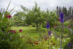 Även om de odlar mycket ätbart så pryder en hel del färgglada blommor trädgården.