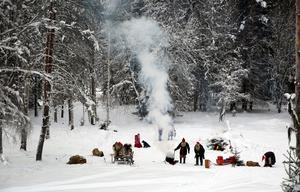 Tomtarna i skogen sågade ved, eldade, lekte med hunden och förberedde julklapparna.