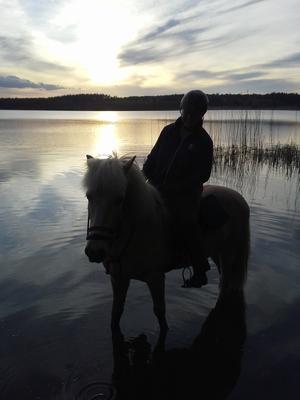Ljuvlig sommarkväll med hästen. Foto Mari Ulltoft